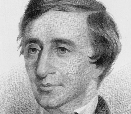 biography Henry David Thoreau